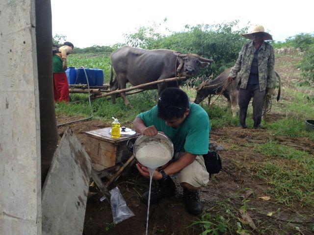 Daniel washing rice